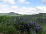 Cantal_Mountain2